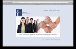 FH-consultoría