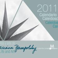 Calendario caleidoscópico 2011