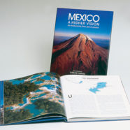 Mexico: A higher vision